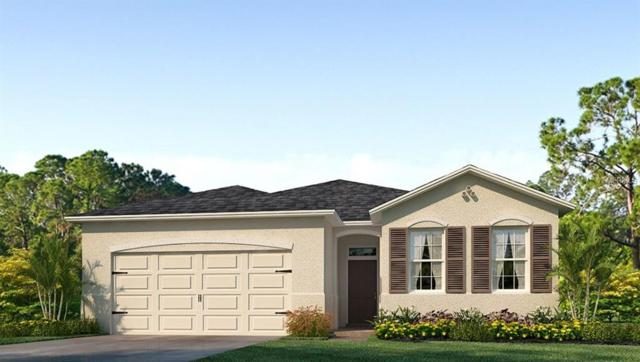 1189 Pipestone Place, Wesley Chapel, FL 33543 (MLS #T3151820) :: The Duncan Duo Team