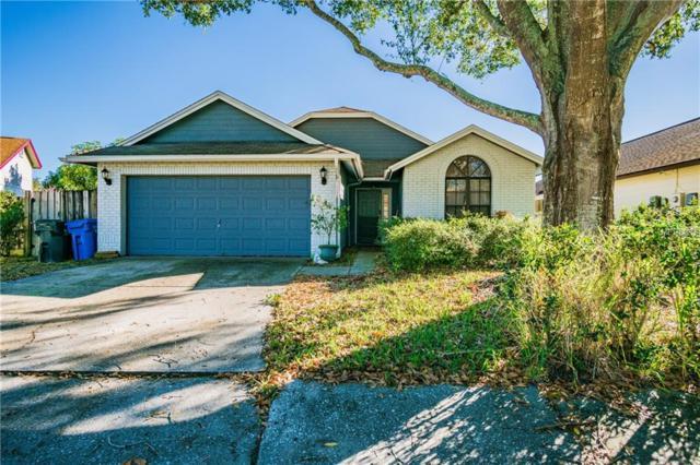 5477 Friarsway Drive, Tampa, FL 33624 (MLS #T3151843) :: Arruda Family Real Estate Team