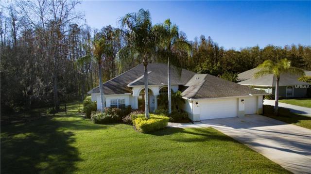 1405 Kensington Woods Drive, Lutz, FL 33549 (MLS #T3151864) :: Arruda Family Real Estate Team