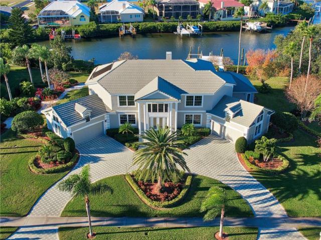 6417 Rubia Circle, Apollo Beach, FL 33572 (MLS #T3151868) :: Zarghami Group