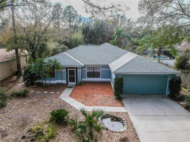 5221 Eagle Island Drive, Land O Lakes, FL 34639 (MLS #T3151880) :: Arruda Family Real Estate Team