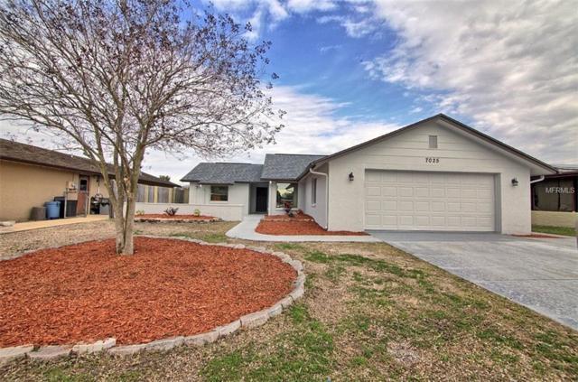7025 Moravian Drive, Port Richey, FL 34668 (MLS #T3151899) :: Jeff Borham & Associates at Keller Williams Realty