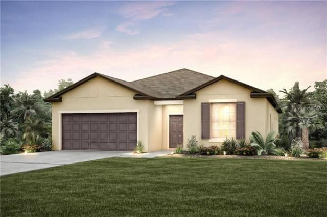 11710 Brighton Knoll, Riverview, FL 33579 (MLS #T3151908) :: The Duncan Duo Team