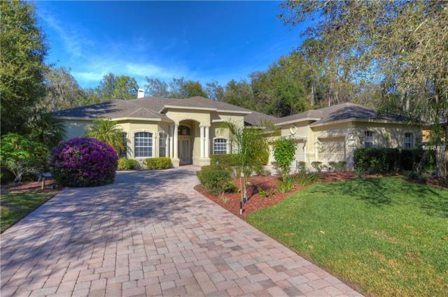 17908 Burnt Oak Lane, Lithia, FL 33547 (MLS #T3151909) :: Dalton Wade Real Estate Group