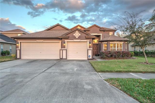 4630 Pointe O Woods Drive, Wesley Chapel, FL 33543 (MLS #T3151923) :: Arruda Family Real Estate Team