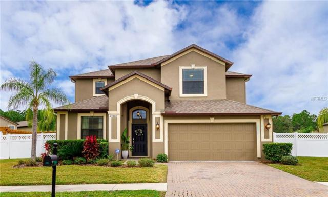 20006 Satin Leaf Avenue, Tampa, FL 33647 (MLS #T3151946) :: Delgado Home Team at Keller Williams