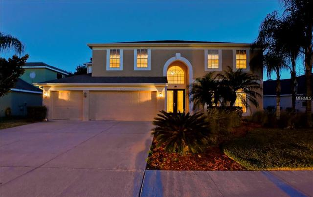 7334 Night Heron Drive, Land O Lakes, FL 34637 (MLS #T3151957) :: Arruda Family Real Estate Team