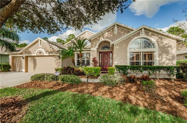 16112 Ivy Lake Drive, Odessa, FL 33556 (MLS #T3151976) :: Team Bohannon Keller Williams, Tampa Properties