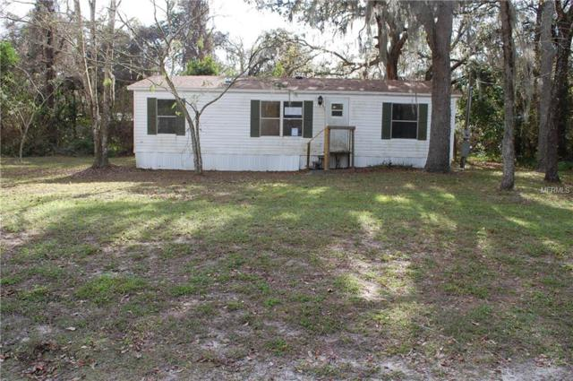 13028 Back Bay Avenue, New Port Richey, FL 34654 (MLS #T3152007) :: The Duncan Duo Team