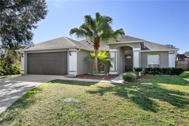 28816 Skyglade Place, Wesley Chapel, FL 33543 (MLS #T3152041) :: The Duncan Duo Team