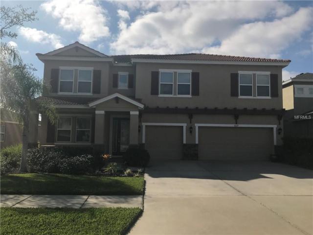 6619 Fairwater Drive, Riverview, FL 33578 (MLS #T3152062) :: The Duncan Duo Team