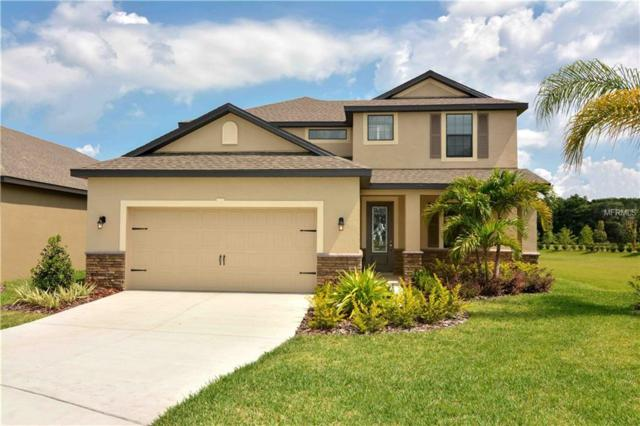 12206 Ballentrae Forest Drive, Riverview, FL 33579 (MLS #T3152092) :: The Duncan Duo Team