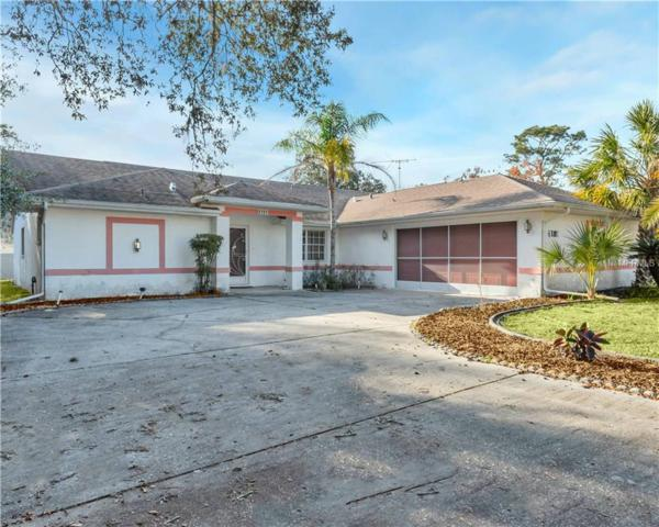 6181 Helmly Avenue, Spring Hill, FL 34608 (MLS #T3152105) :: RE/MAX Realtec Group