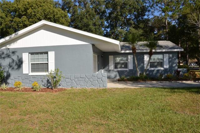 506 Limetree Drive, Oldsmar, FL 34677 (MLS #T3152180) :: Paolini Properties Group