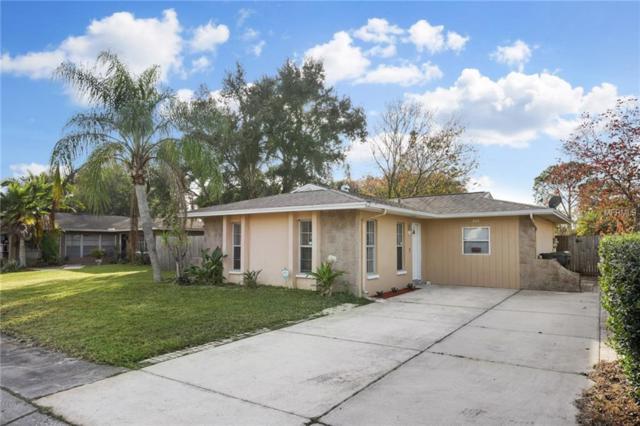 404 Maplewood Drive, Oldsmar, FL 34677 (MLS #T3152248) :: Paolini Properties Group
