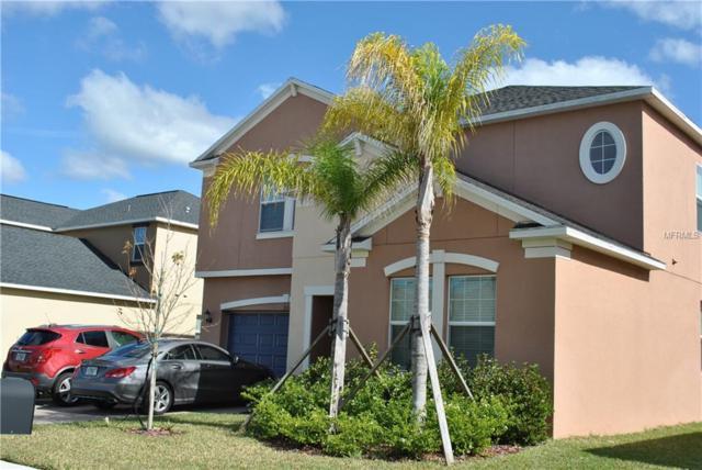 3127 Calvano Drive, Land O Lakes, FL 34639 (MLS #T3152278) :: Delgado Home Team at Keller Williams