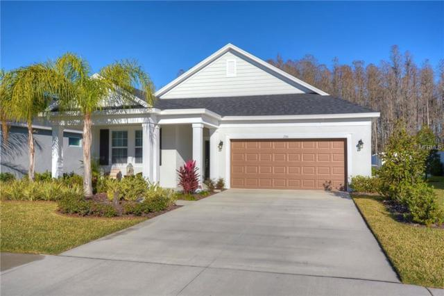 2741 Verona Lane, Odessa, FL 33556 (MLS #T3152281) :: Griffin Group