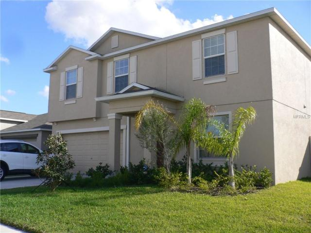 10007 Crested Fringe Drive, Riverview, FL 33578 (MLS #T3152325) :: The Duncan Duo Team