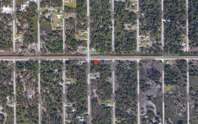 1124 Moore Avenue, Lehigh Acres, FL 33972 (MLS #T3152340) :: Alpha Equity Team