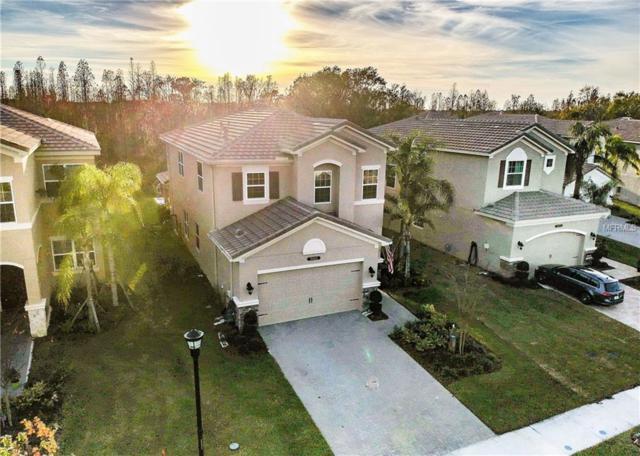 30362 Ceasar Park Drive, Wesley Chapel, FL 33543 (MLS #T3152343) :: Griffin Group