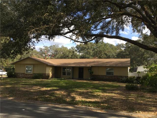 2202 S Waterman Drive, Valrico, FL 33594 (MLS #T3152349) :: Griffin Group