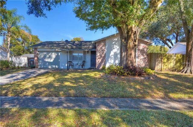 13820 Pathfinder Drive, Tampa, FL 33625 (MLS #T3152355) :: Team Bohannon Keller Williams, Tampa Properties