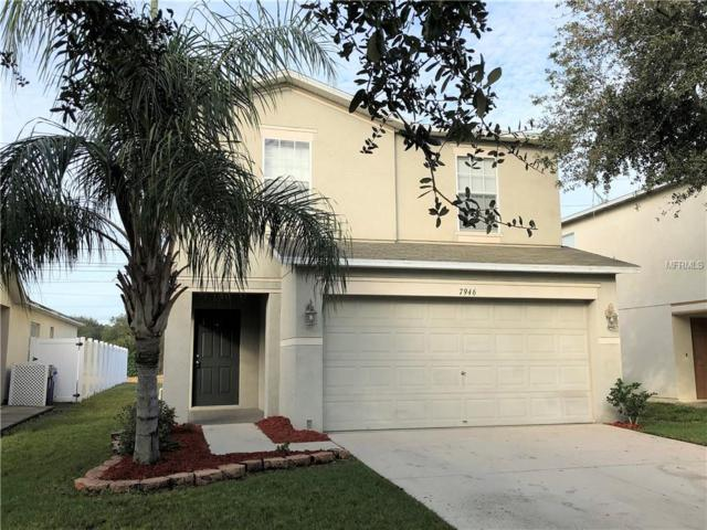 7946 Carriage Pointe Drive, Gibsonton, FL 33534 (MLS #T3152384) :: Your Florida House Team