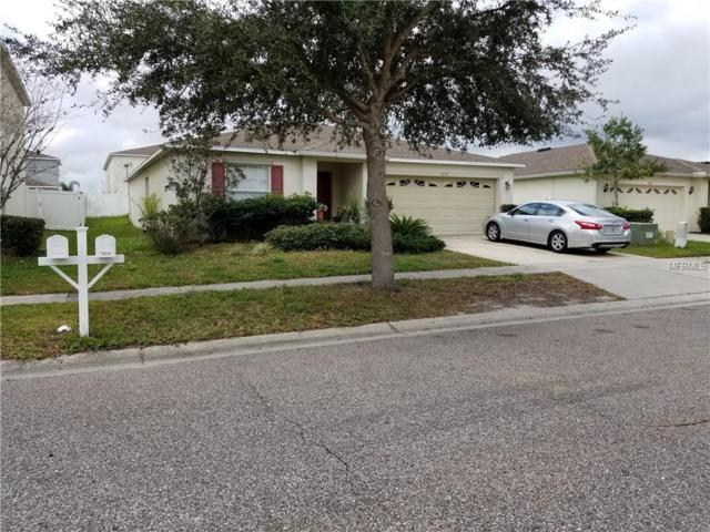 5039 Ballard Crest Lane, Wesley Chapel, FL 33543 (MLS #T3152404) :: The Duncan Duo Team