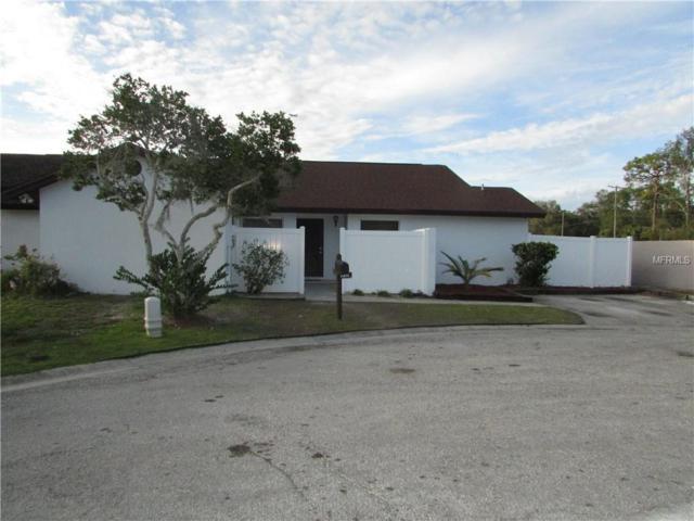 11416 Waveland Way, Tampa, FL 33624 (MLS #T3152413) :: RE/MAX Realtec Group