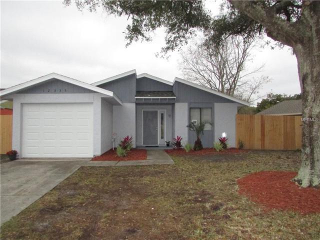 12335 Cloverstone Drive, Tampa, FL 33624 (MLS #T3152418) :: Team Bohannon Keller Williams, Tampa Properties