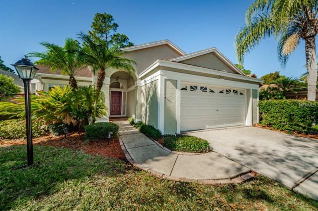 10406 Springrose Drive, Tampa, FL 33626 (MLS #T3152421) :: Team Bohannon Keller Williams, Tampa Properties