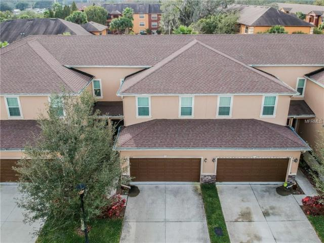 8613 Andalucia Field Drive, Temple Terrace, FL 33637 (MLS #T3152425) :: Griffin Group