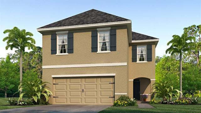 16831 Trite Bend Street, Wimauma, FL 33598 (MLS #T3152446) :: The Duncan Duo Team