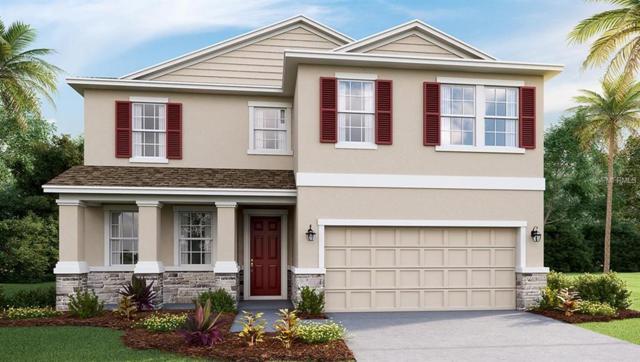 2721 Storybrook Preserve Drive, Odessa, FL 33556 (MLS #T3152479) :: Team Bohannon Keller Williams, Tampa Properties