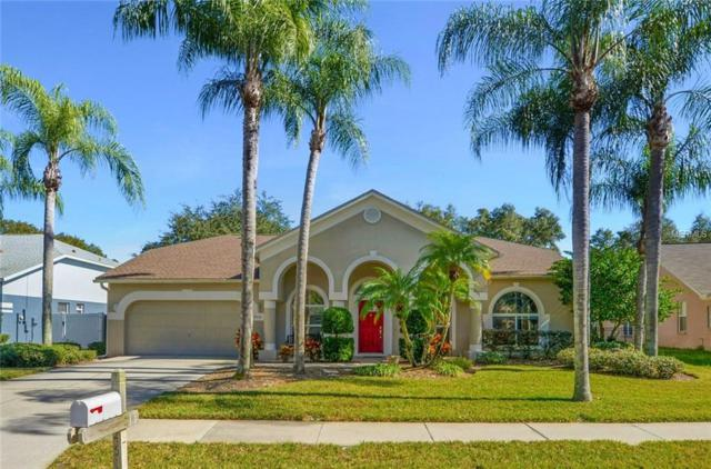 4514 Gentrice Drive, Valrico, FL 33596 (MLS #T3152480) :: The Duncan Duo Team