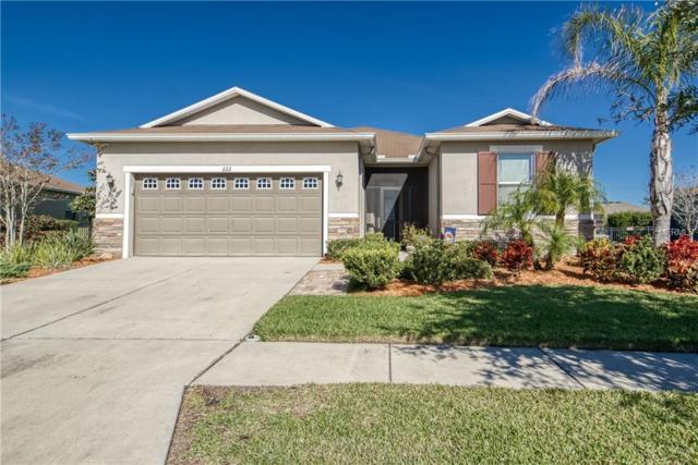 222 Star Shell Drive, Apollo Beach, FL 33572 (MLS #T3152491) :: Lovitch Realty Group, LLC