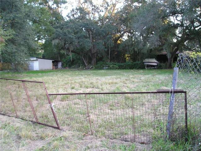 Salem, Zephyrhills, FL 33540 (MLS #T3152509) :: Bustamante Real Estate