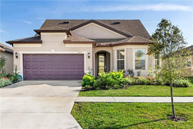11617 Kilkenny Coral Drive, Riverview, FL 33579 (MLS #T3152511) :: The Duncan Duo Team