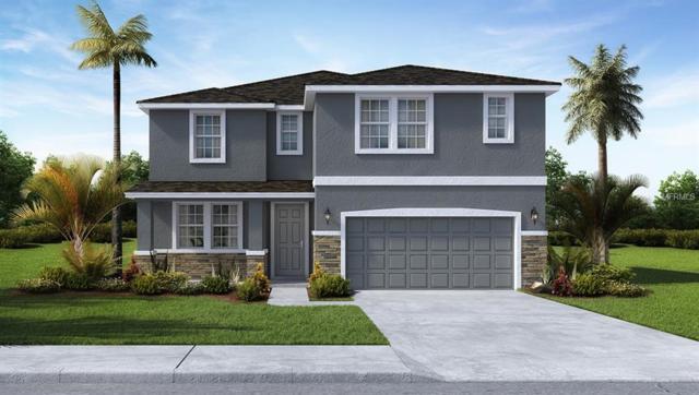 2707 Storybrook Preserve Drive, Odessa, FL 33556 (MLS #T3152520) :: Team Bohannon Keller Williams, Tampa Properties