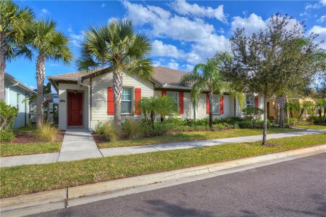 11307 Temperley Place, Tampa, FL 33625 (MLS #T3152530) :: Cartwright Realty