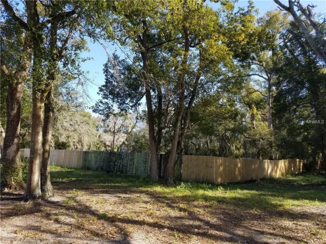 19029 1ST ST NE, Lutz, FL 33549 (MLS #T3152533) :: The Duncan Duo Team