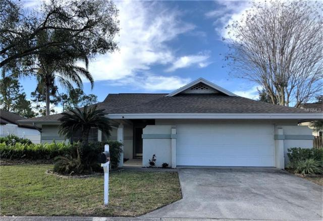 13606 Clubside Drive, Tampa, FL 33624 (MLS #T3152557) :: The Duncan Duo Team