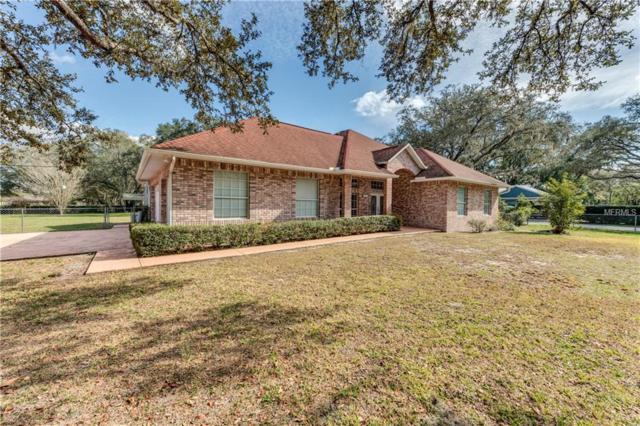 17119 Hanna Road, Lutz, FL 33549 (MLS #T3152567) :: Lock & Key Realty