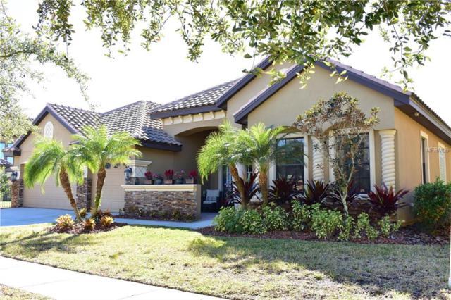 20104 Pond Spring Way, Tampa, FL 33647 (MLS #T3152576) :: Lock & Key Realty