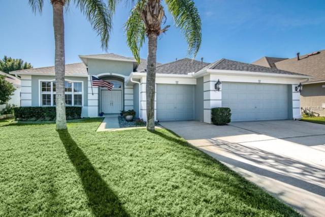 1352 Big Creek Drive, Wesley Chapel, FL 33544 (MLS #T3152588) :: Team Bohannon Keller Williams, Tampa Properties