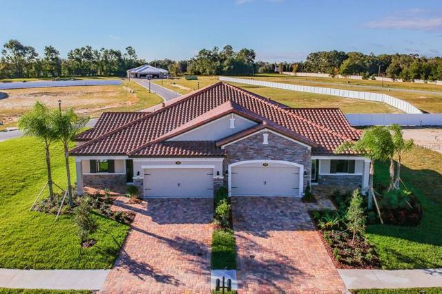 4005 Solamor Street, Lakeland, FL 33810 (MLS #T3152657) :: Bustamante Real Estate