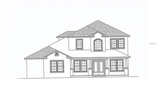 8 Beech Street, Odessa, FL 33556 (MLS #T3152663) :: Team Bohannon Keller Williams, Tampa Properties