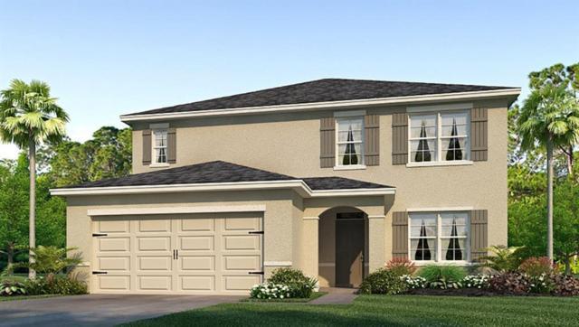 2638 Storybrook Preserve Drive, Odessa, FL 33556 (MLS #T3152664) :: Team Bohannon Keller Williams, Tampa Properties