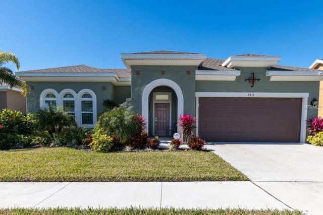 6416 Salt Creek Avenue, Apollo Beach, FL 33572 (MLS #T3152682) :: Team Bohannon Keller Williams, Tampa Properties