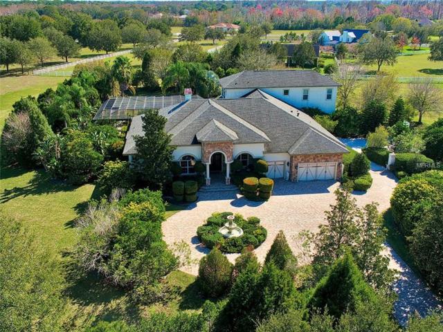 11471 Trotting Down Drive, Odessa, FL 33556 (MLS #T3152684) :: Team Bohannon Keller Williams, Tampa Properties